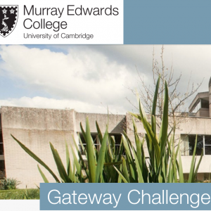 Gateway Challenges Blog